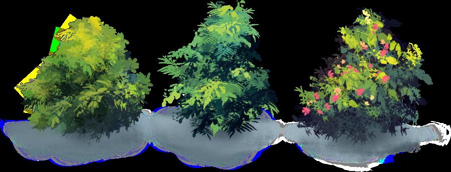 naturemaster-bushes.png