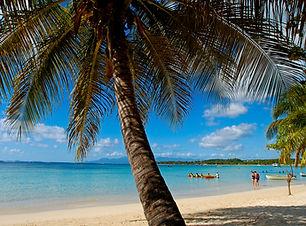plage publique de sainte-anne 03.jpg