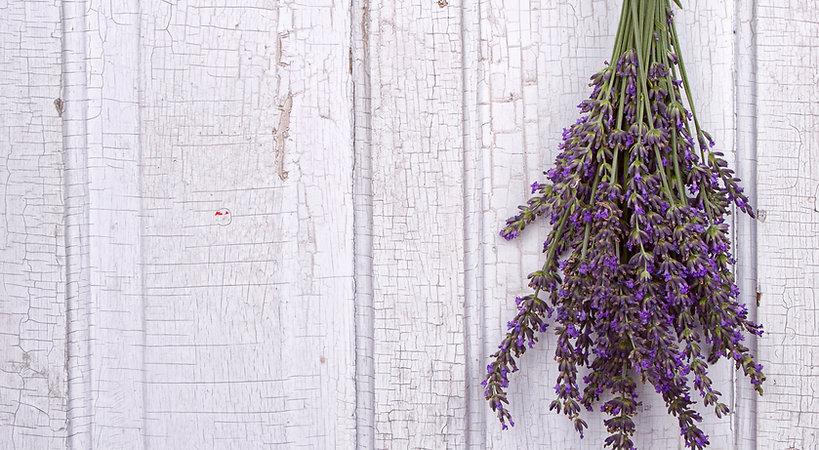 Lavender Door.jpeg
