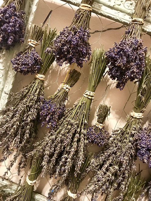 Dried Lavender Bundles - Medium