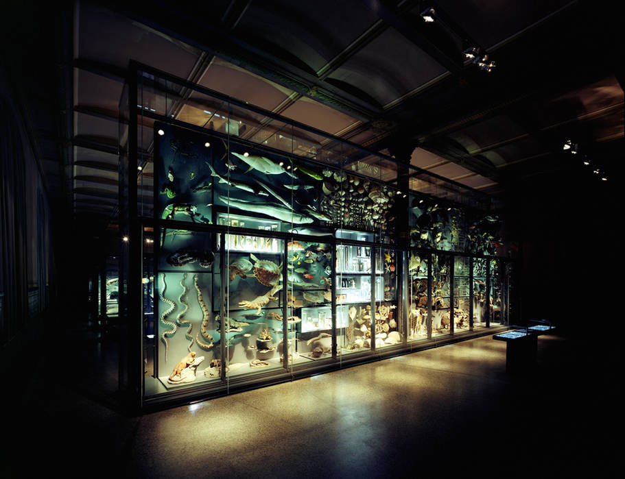 Museum of natural study
