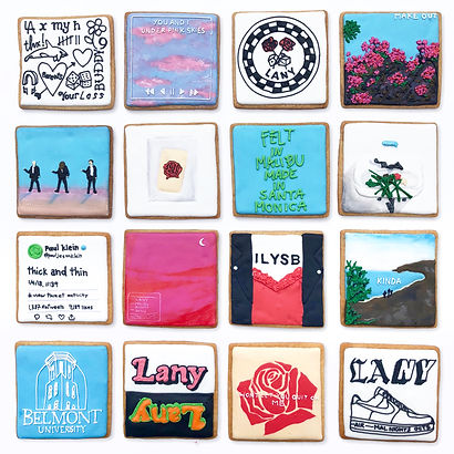 Custom decorated sugar cookies for the band LANY of their album art, merchandise, and fan art
