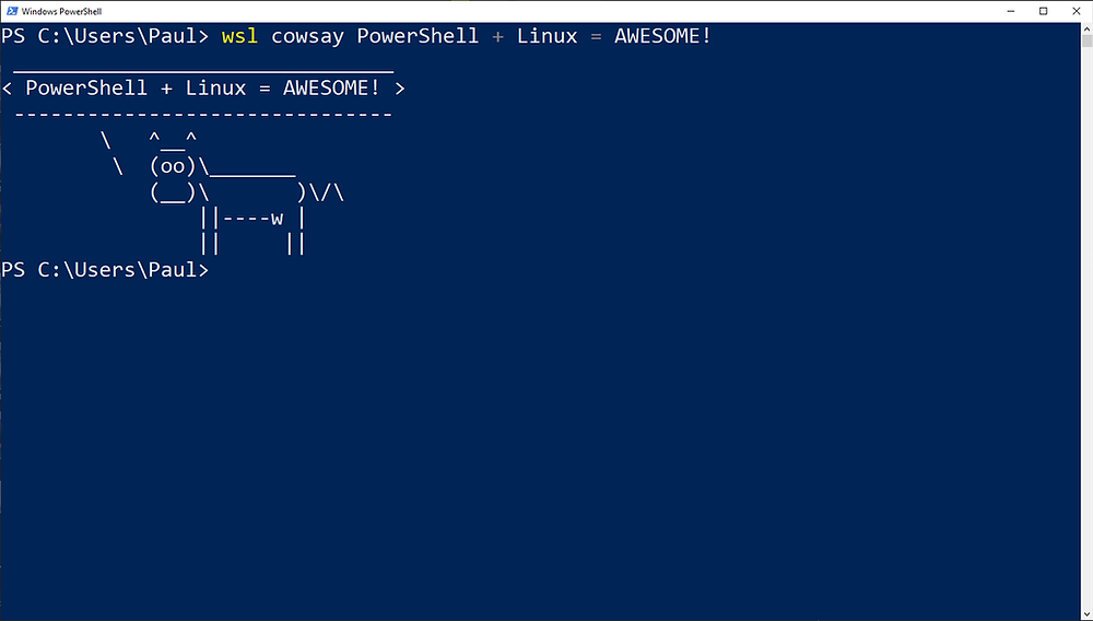 Running Linux Commands from PowerShell