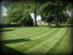 Residential Lawn Maintenance 63301