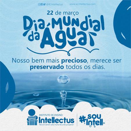 14 Agua s.jpg