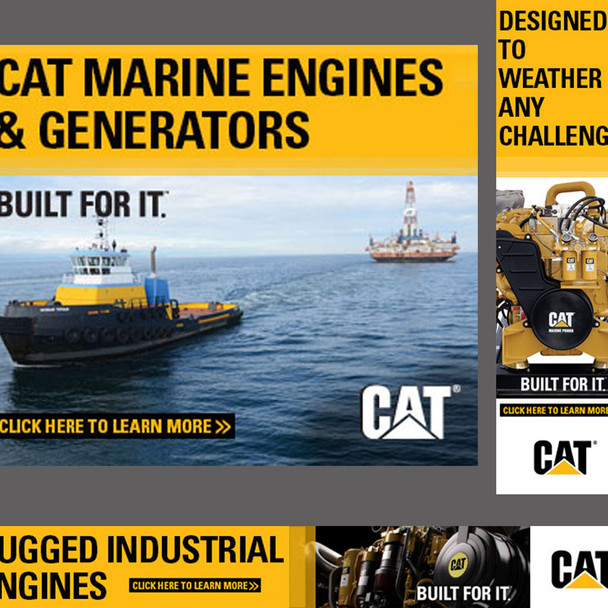 Web Banners for Caterpillar