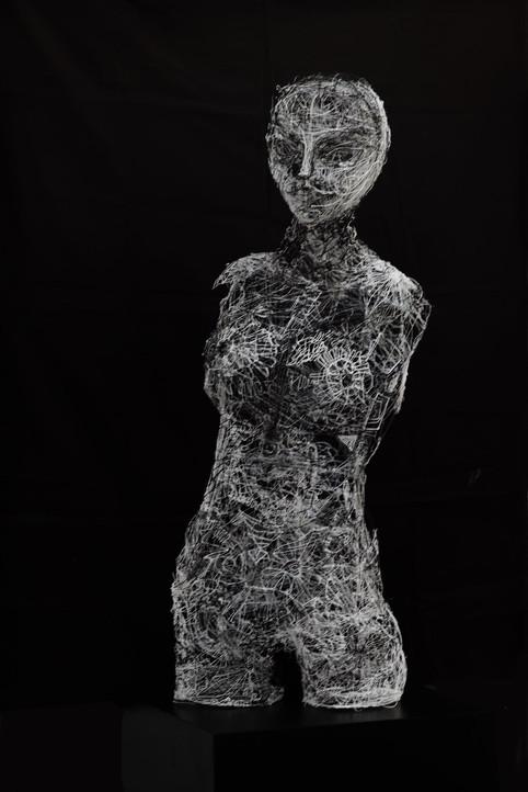 ''Black and White Venus''