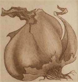 Garlic I