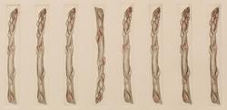 Syncopated Asparagus