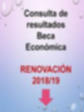 consulta resultados renovacion 2018.jpg