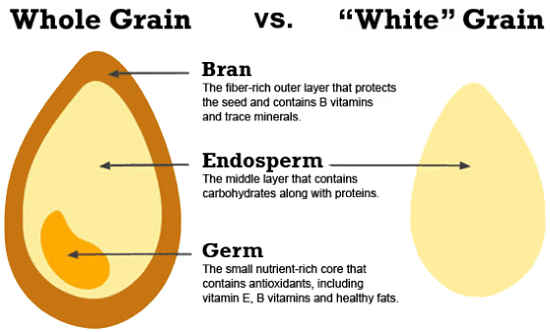 Image result for whole grains vs refined grains
