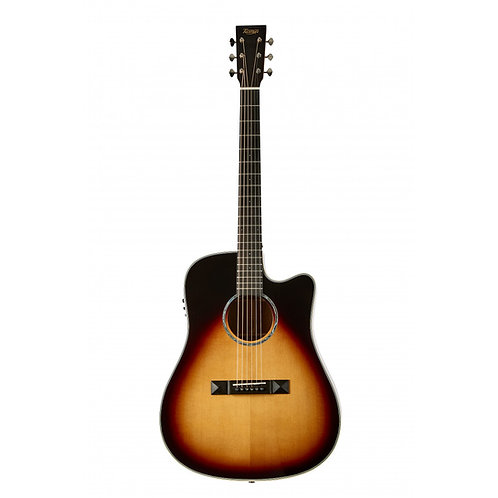 Tasman  TA300-CE Dreadnought Acoustic Electric Guitar W/Case