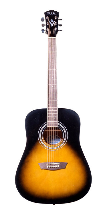 WASHBURN GWLS ACOUSTIC PACK