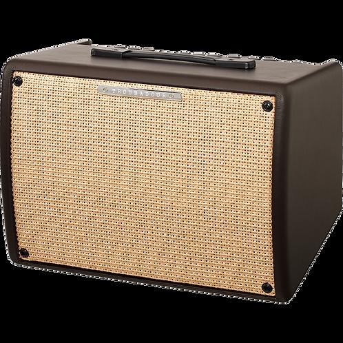TROUBADOUR ACOUSTIC GUITAR AMP 30 WATT T30II