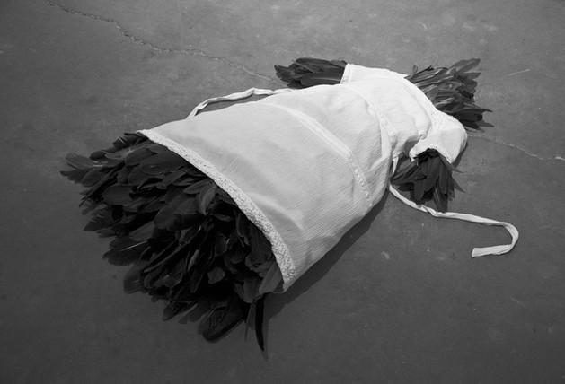 Bird, 2009