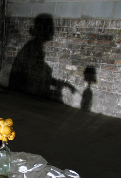 Shadow and flower, 2003
