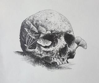 ginkgo skull 9x9.jpg