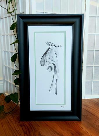 'Luna Moth' by Chris Winterson