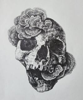 mushroom skull 8.5x11.jpg
