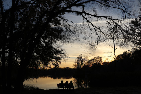 Lake Alice - Gainesville, FL