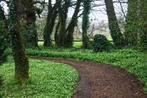 Blarney, County Cork, Ireland