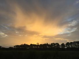Estero Sunrise