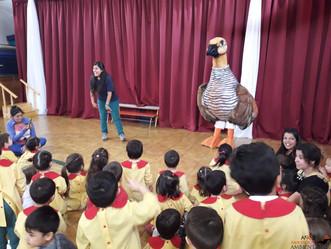 Environmental education workshops about Cauquén Colorado