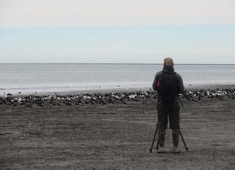 Con los pies en el barro protegen a las aves y el ambiente
