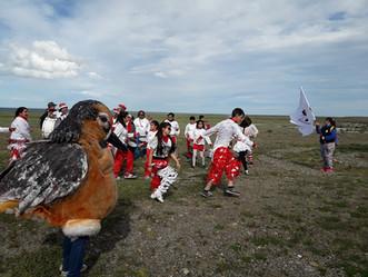 Cerró con éxito el V Festival de Aves Playeras