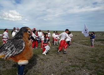 Successful closing of the V Festival of Shorebirds