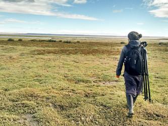Wetlands dir a sustainable urban future