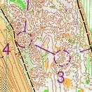 Neborough Forest - Eryri Orienteering