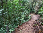 Hemmant Trail 2.png