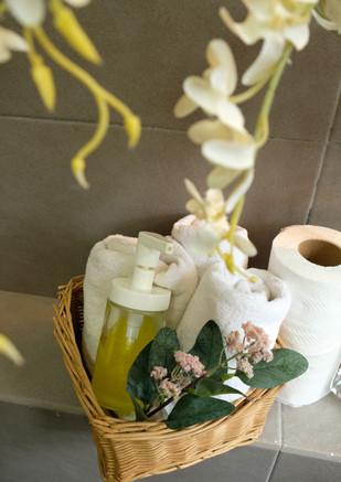 Bathroom Toiletree.JPG