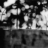 berlin-wall-640x480.jpg
