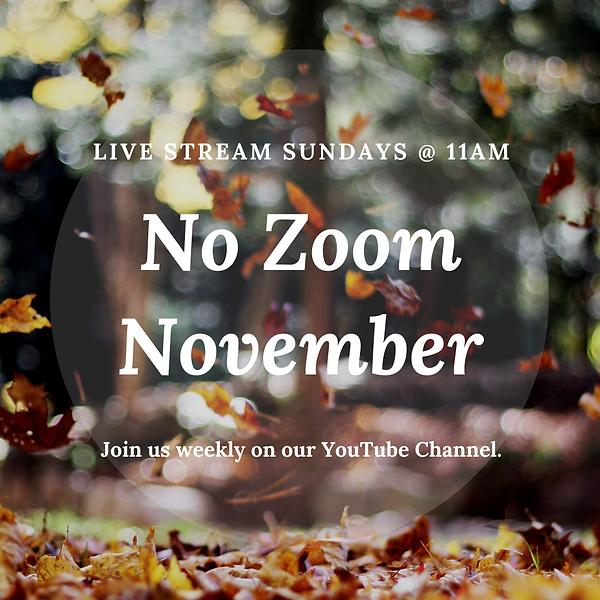 No Zoom November.png