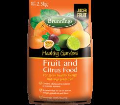 Fruit & Citrus Food