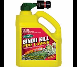 Bindii Kill