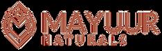 New Logo Bronze-10_edited_edited.png