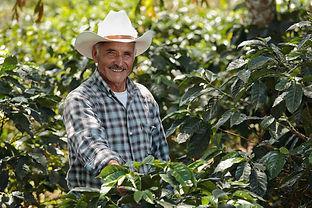 CRS-Honduras-Coffee.jpg