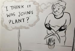 john's plants
