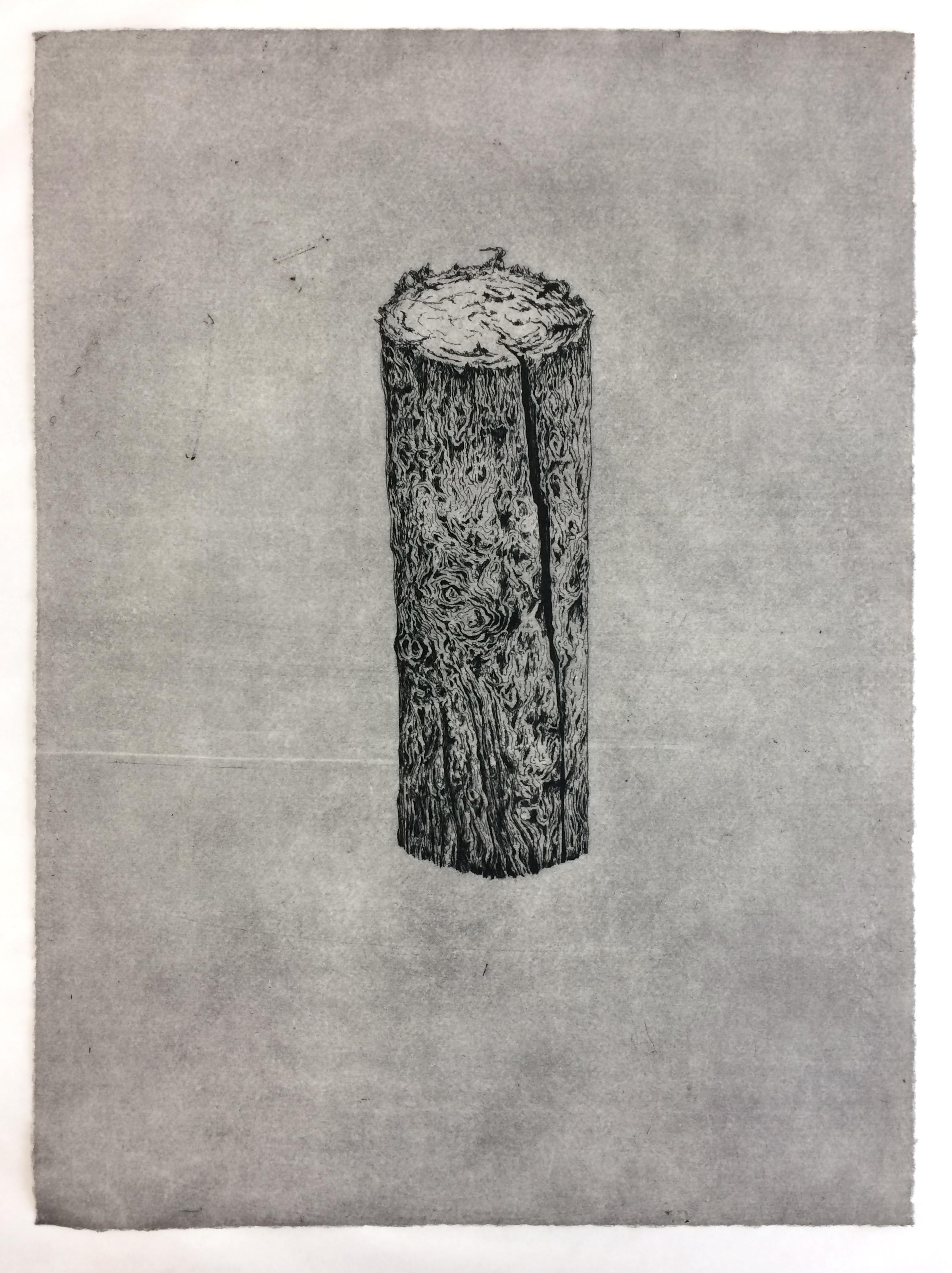 'Peg' - Hardground etching, 29 x 42cm