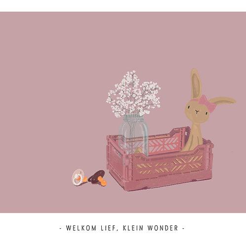 Welkom Lief Klein Wonder
