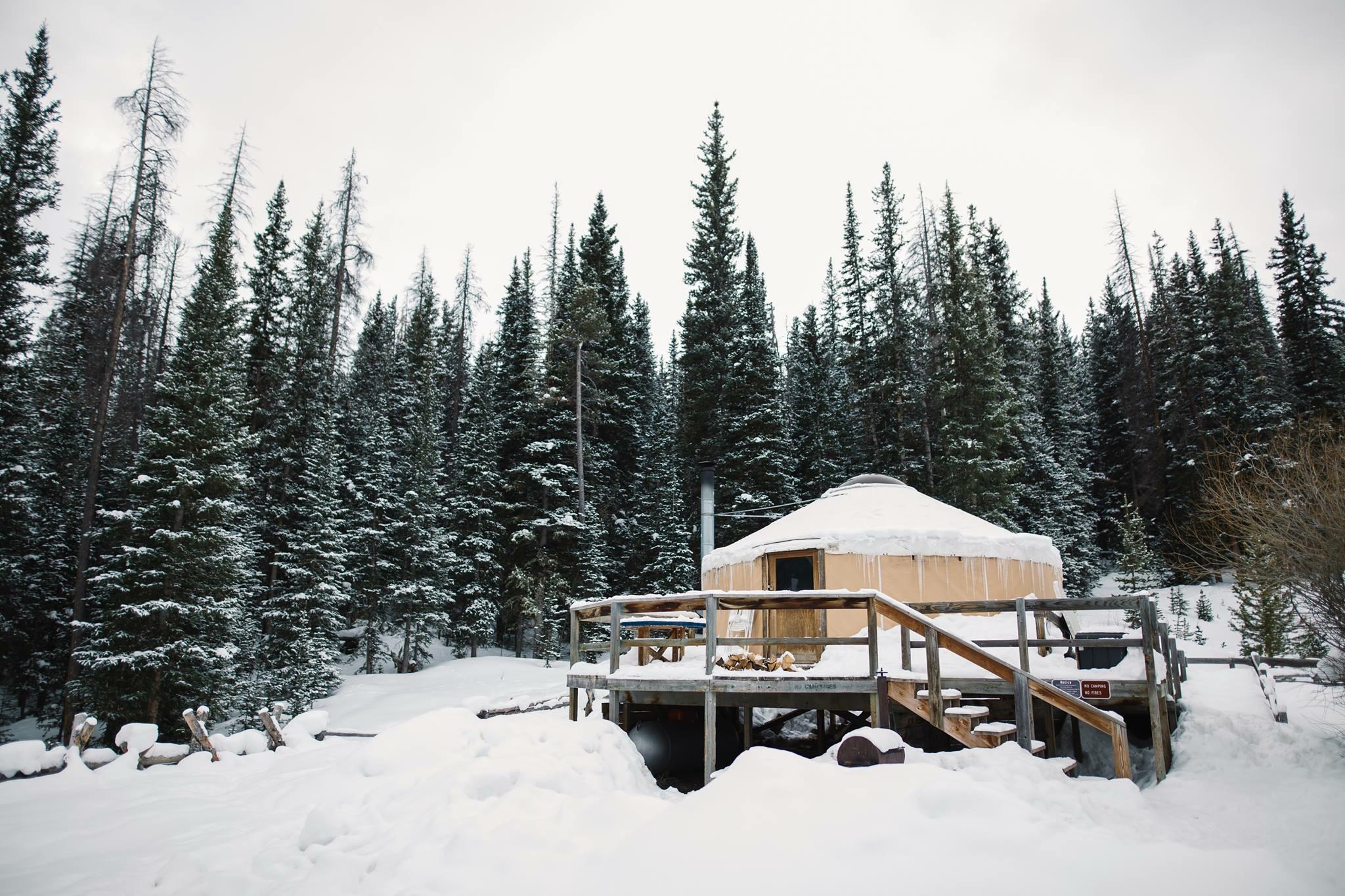 Dancing Moose Yurt