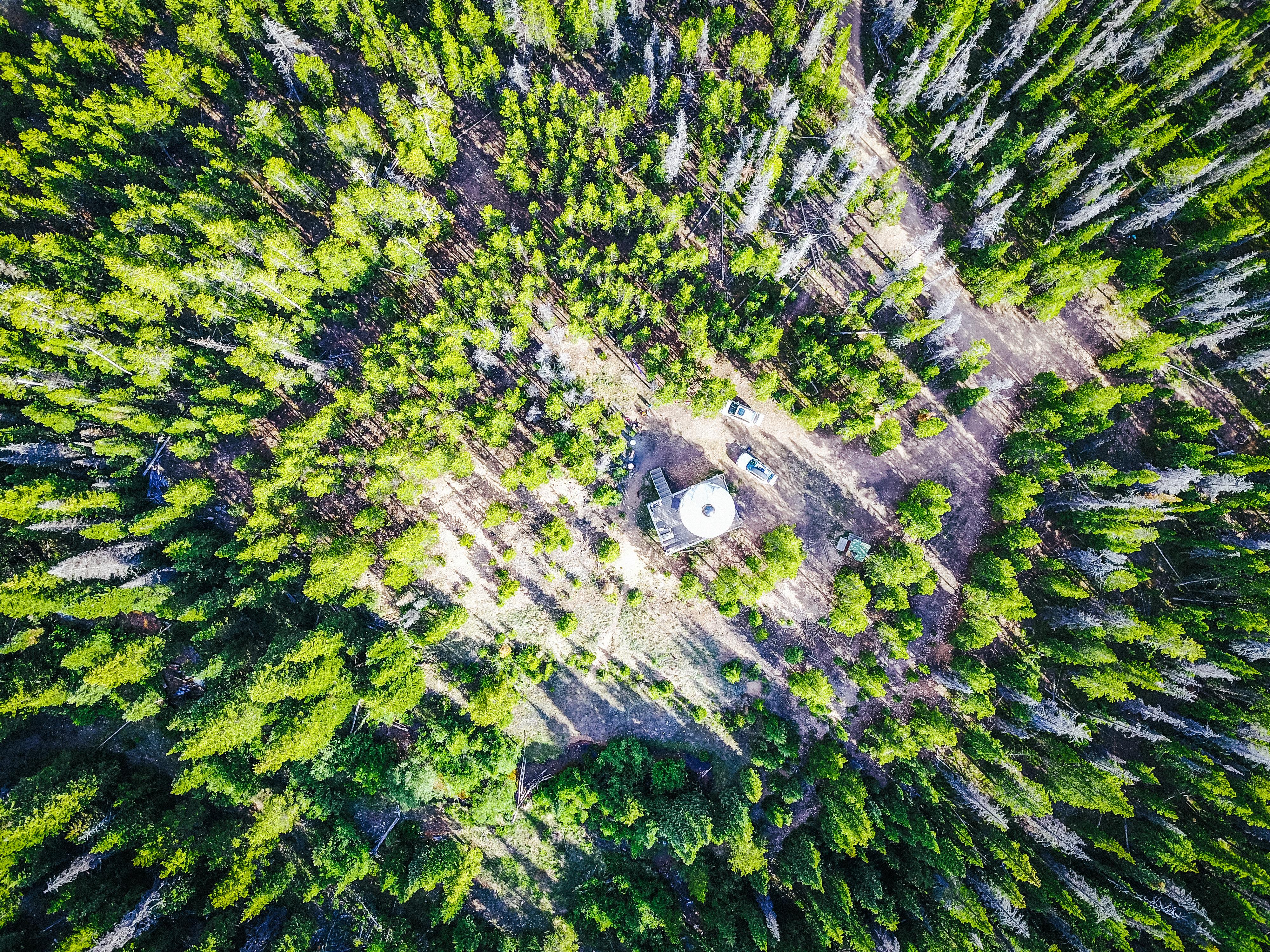 Clark Peak Yurt