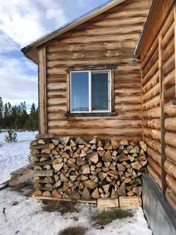 Willow Lodge Cabin