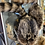 Thumbnail: Raccoon Pelt Hats -locally trapped
