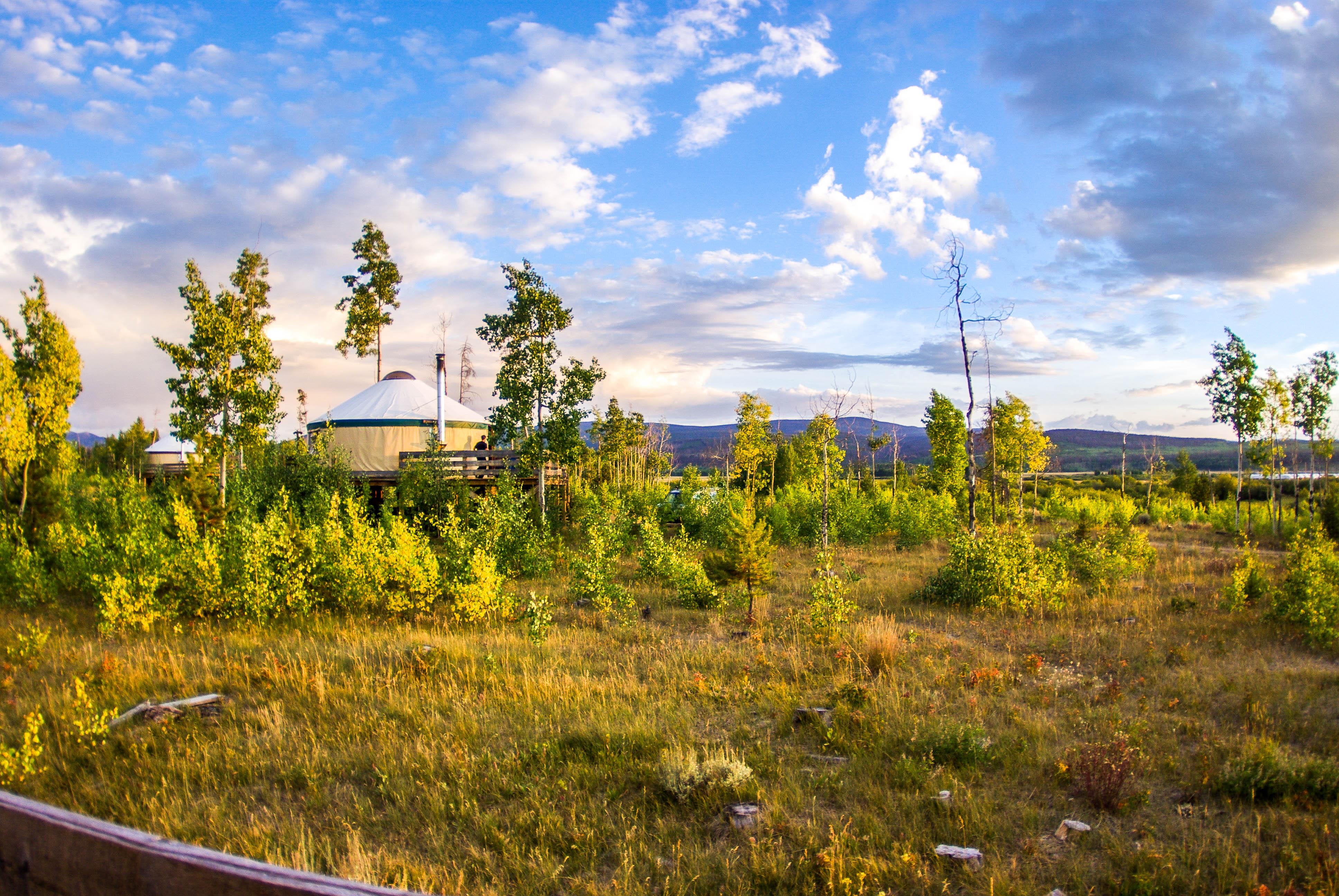 Aspen Yurt foreground (Black Bear)