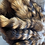 Thumbnail: Fox, Lynx, coyote, Raccoon locally trapped tails
