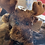 Thumbnail: Moose on Loose in Gould, Colorado plush toy